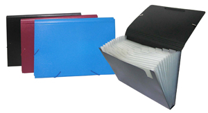 Plastic folders Accordion File
