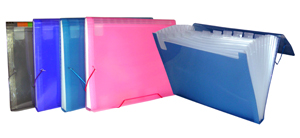 plastic folder accordion file