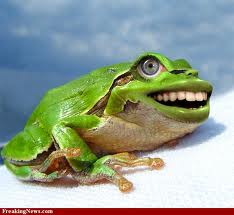 laughingfrog