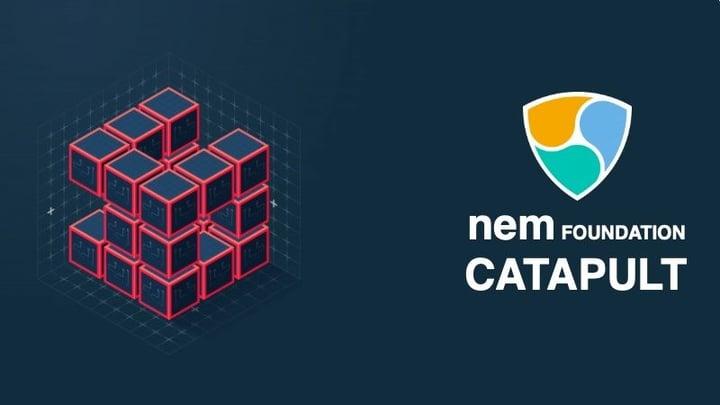 Tutellus y la Fundación NEM lanzamos el curso oficial de Catapult