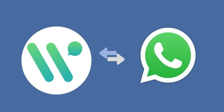 ▶How does WATI Work as a WhatsApp CRM?◀