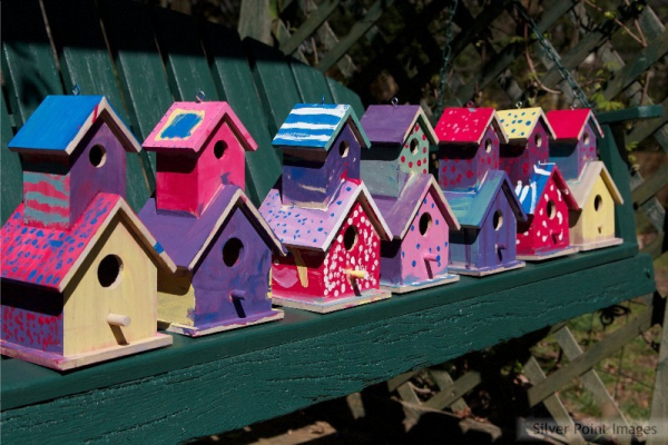 Creating birdhouses is a fun service project that can help the environment.