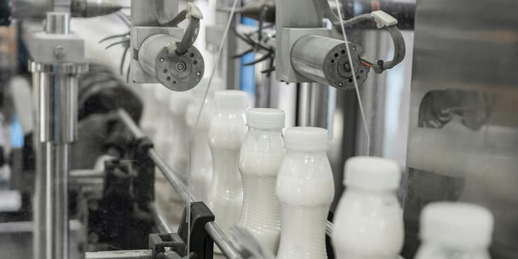 Automated equipment for dairy production