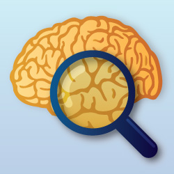 semantic search brain