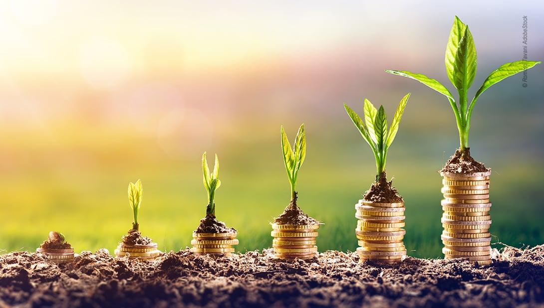 Bild zur Umweltverantwortung und Gewinn in Unternehmen
