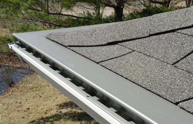 leafx-seamless-gutter-cover