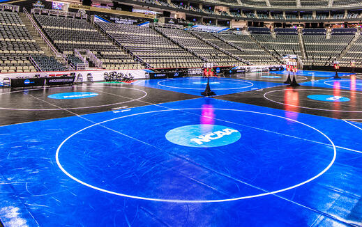 How Resilite Became The Go-To Name in Wrestling Mats