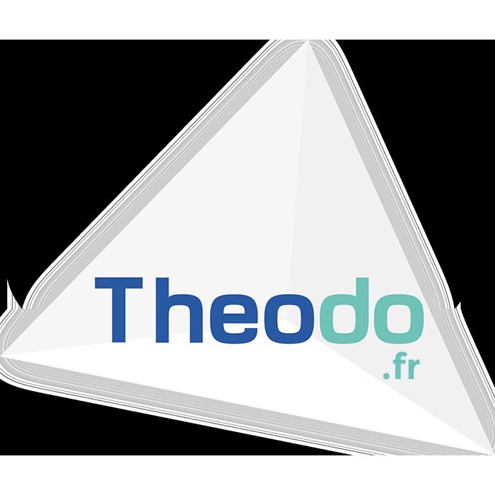 Logo Theodo FR