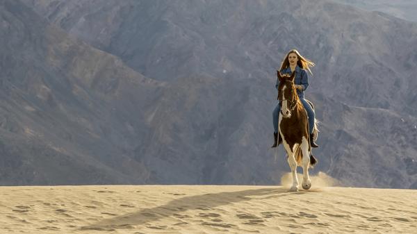 Pilates for Horseback Riding