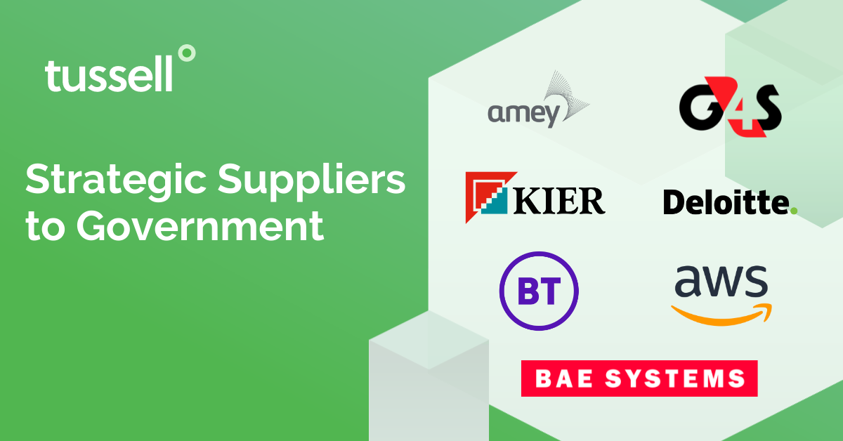2021 Analysis of UK Government Strategic Suppliers