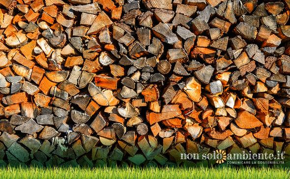 Basta sussidi pubblici per le centrali a biomasse, l'appello di 500 scienziati