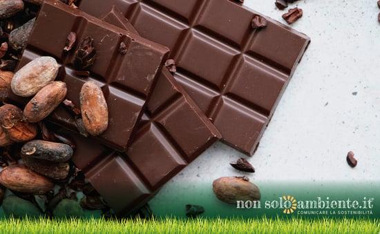 Cambiamenti climatici: potremmo dire addio al cioccolato