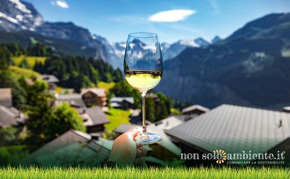 Enoturismo: il buon vino al centro dei viaggi degli italiani