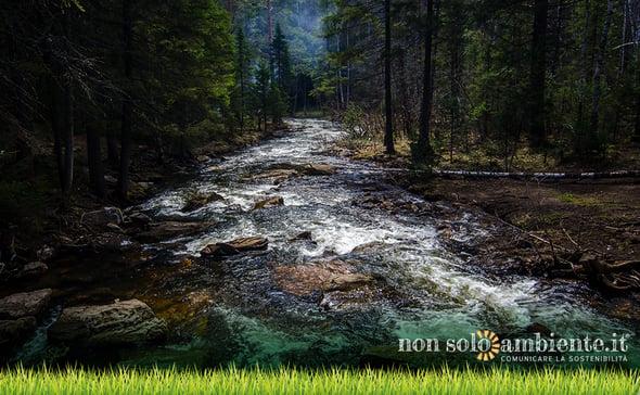 RIBES, rinnovabili e biodiversità fluviale al centro del progetto di ricerca