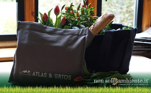 Innovative alternatives to plastic bags