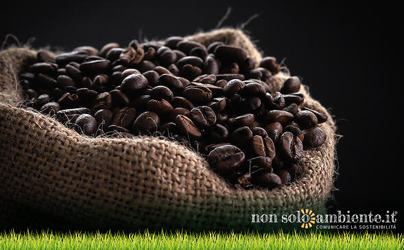 Sustainable coffee experience: Lavazza partner dell'Italia a Expo 2020 Dubai