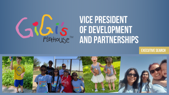 Executive Search: Vice President of Development and Partnerships