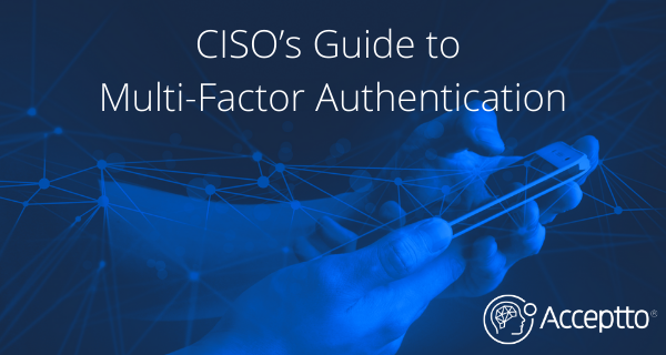 CISO's Guide to Multi-Factor Authentication
