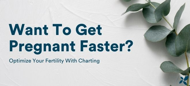 How can charting help optimize my fertility?