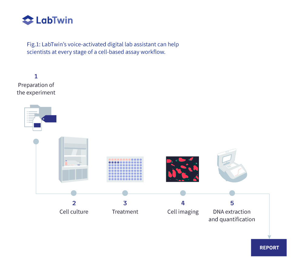 Cell Based Assay For High Content Screening In Pharma