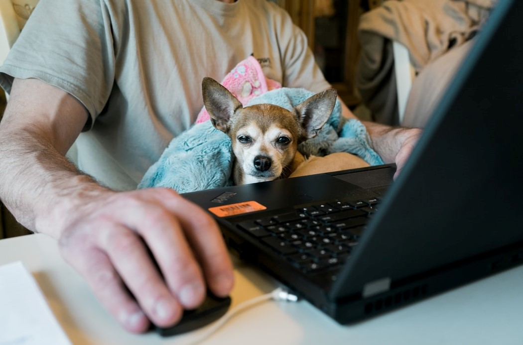 3 Steps to a Happy, Productive, Work-From-Home Lifestyle