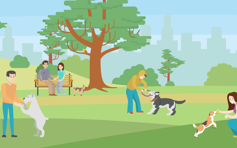 What is the value of dog parks in manufactured housing communities?