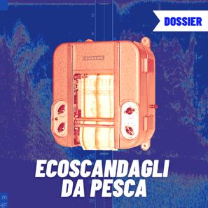 ECOSCANDAGLI DA PESCA - FURUNOACADEMY