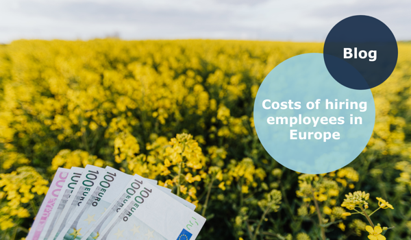 Costs of hiring European employees - Euros in a field of flowers
