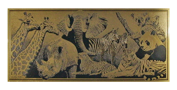zoo animals etched brass plaque