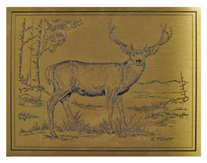 deer etched brass plaque