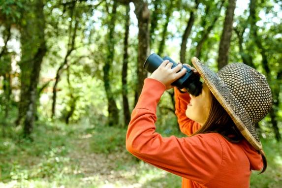 Take Your Kids Birdwatching This Summer!