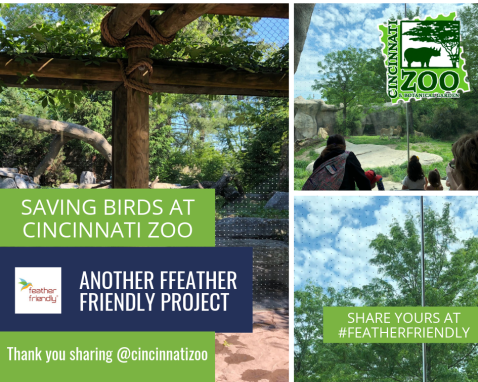 Feather Friendly® Completes Its Second Project at the Cincinnati Zoo