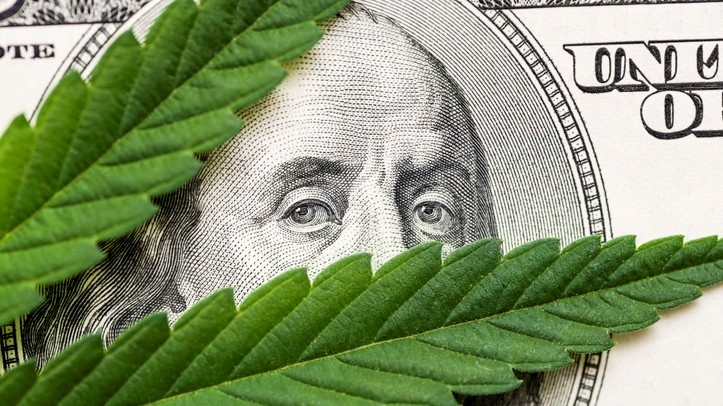 State Legalization of Cannabis: How Financial Institutions Can Stay Ahead of the Game