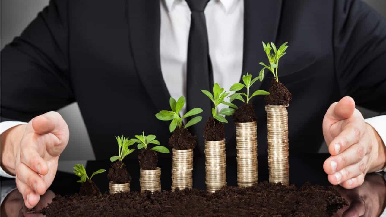directivo protegiendo plantas sembradas encima de monedas concepto de sostenibilidad empresarial