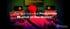 musico interdiciplinario