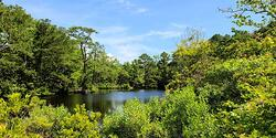 Press Release - The Swamp School and Wildnote Partnership Modernizes Wetland Fieldwork Education