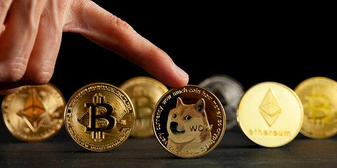 Dogecoin: The Good, Bad, and Ugly