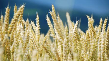 FINSUM + Magnifi: Agriculture Changing the ESG Landscape