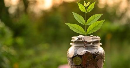 Incorporating Income Strategies in Client Portfolios