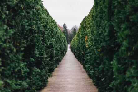 FINSUM + Magnifi: ETFs that Hedge Higher Volatility