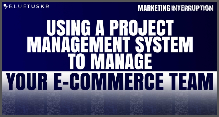 Using a Project Management System to Manage your E-commerce Team