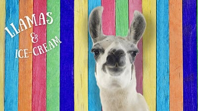 CPT Kid's Day with Llama's and Free Ice Cream