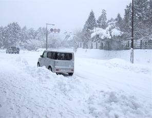 農業用ビニールハウスの降雪前/後の対応について