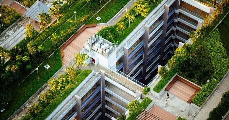Wat zijn de voordelen van een groen dak voor bedrijven?