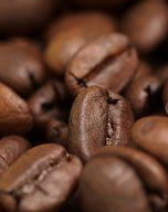 coffeebeans article