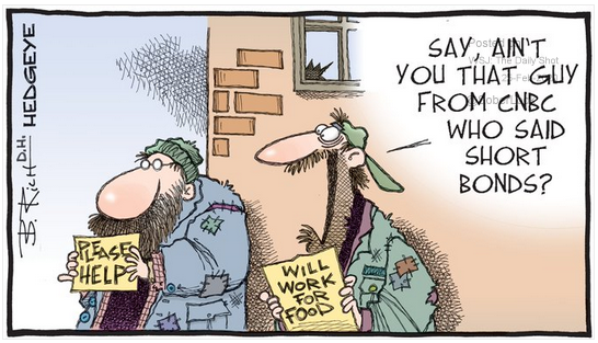 investor irrationality