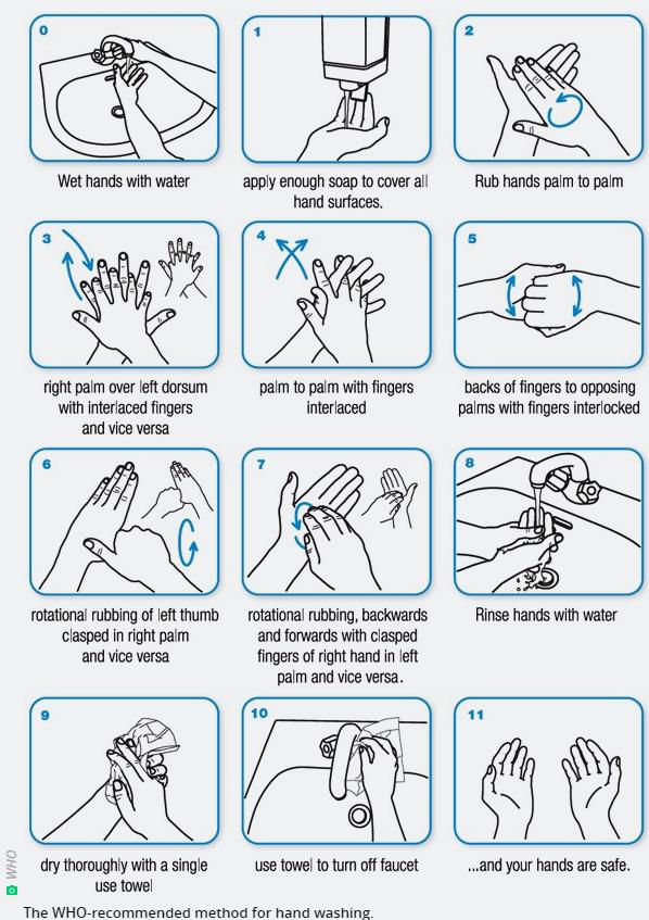 hand washing protocol
