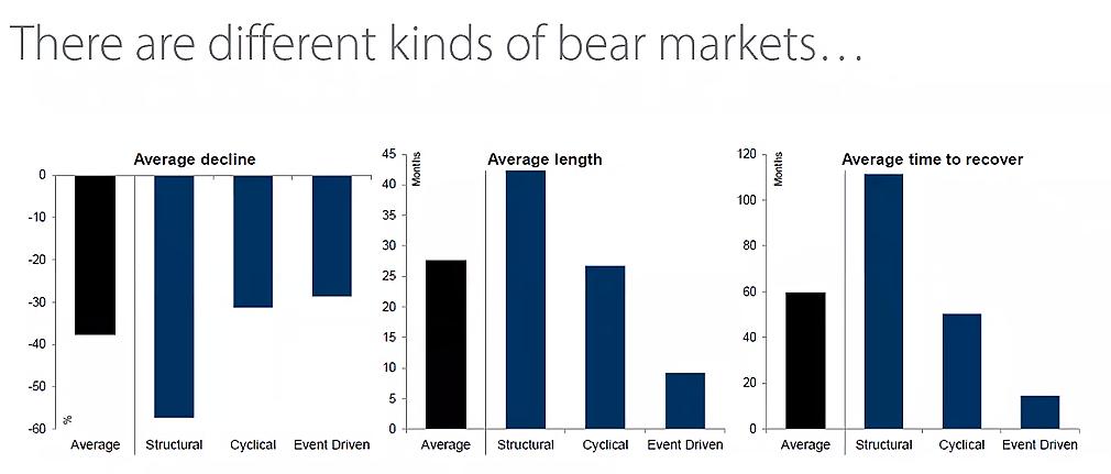 Types of Bears Chart - sharpened