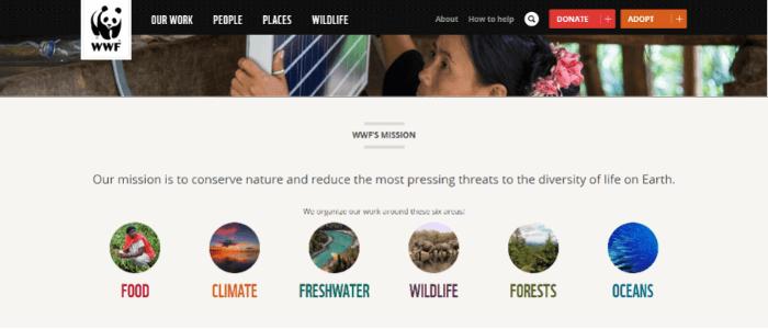 best-nonprofit-websites-alot-of-information