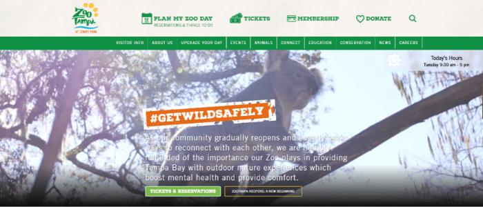best-nonprofit-websites-for-visitors